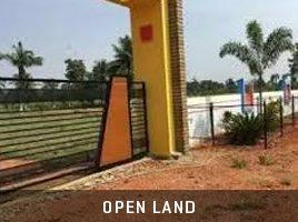 open-land